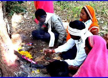 छिंदवाड़ा के इकलहरा में भी पूजा जाने लगा महुए का पेड़