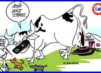 गंदगी से बजबजा रही शिव की नगरी . . .