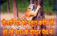 सैलानियों को बहुत करीब से हो रहे बाघ के दीदार पेंच में