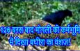 126 बरस बाद मोगली की कर्मभूमि में दिखा बघीरा का वंशज!